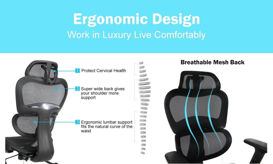 Ergonomic Executive Mesh Office Chair with Suspension Mesh Seat