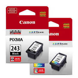 Lovetoner Compatible Replacement for Replacement for Canon PG-245XL CL-246XL Ink//Inkjet Cartridge Black Tri-Color High Yield Combo